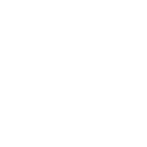 wooden pavilion icon